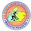 MP Icestock Association Logo