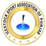Punjab Icestock Association Logo