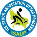 UP Icestock Association Logo